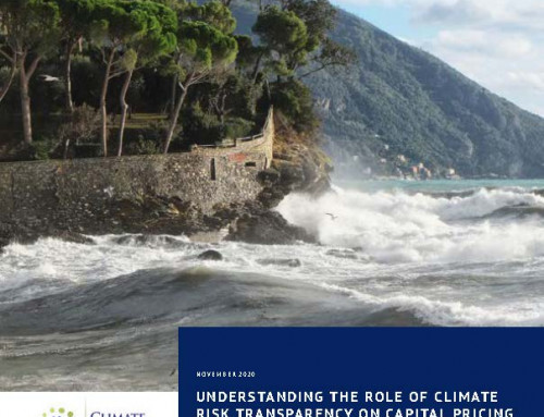 Understanding the Role of Climate Risk Transparency on Capital Pricing for Developing Countries: Findings Report
