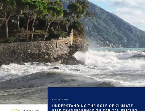 Understanding the Role of Climate Risk Transparency on Capital Pricing for Developing Countries: Policy Brief