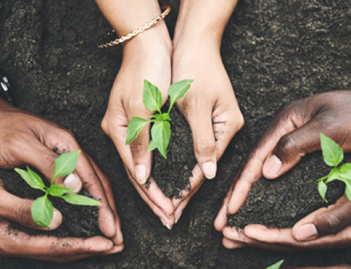 Just Adaptation? Social Equity and Resilient Investment