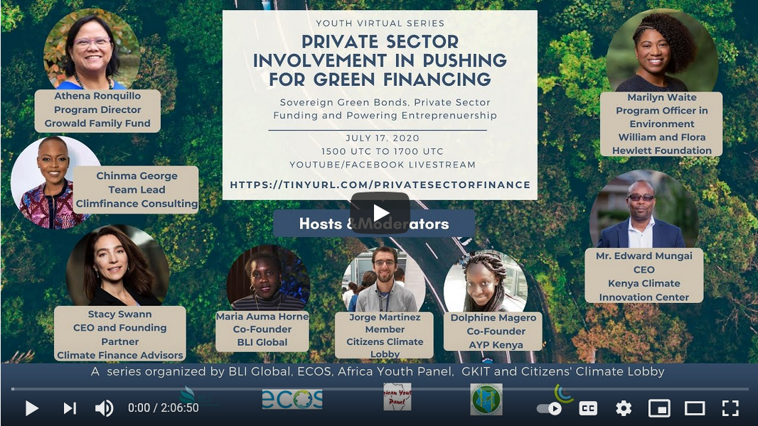 Private Sector Involvement in Pushing for Green Financing