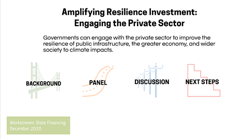 Amplifying Resilience Investment: Engaging the Private Sector